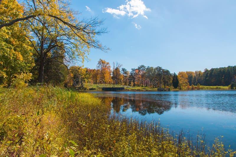与湖和森林的秋天风景 库存图片