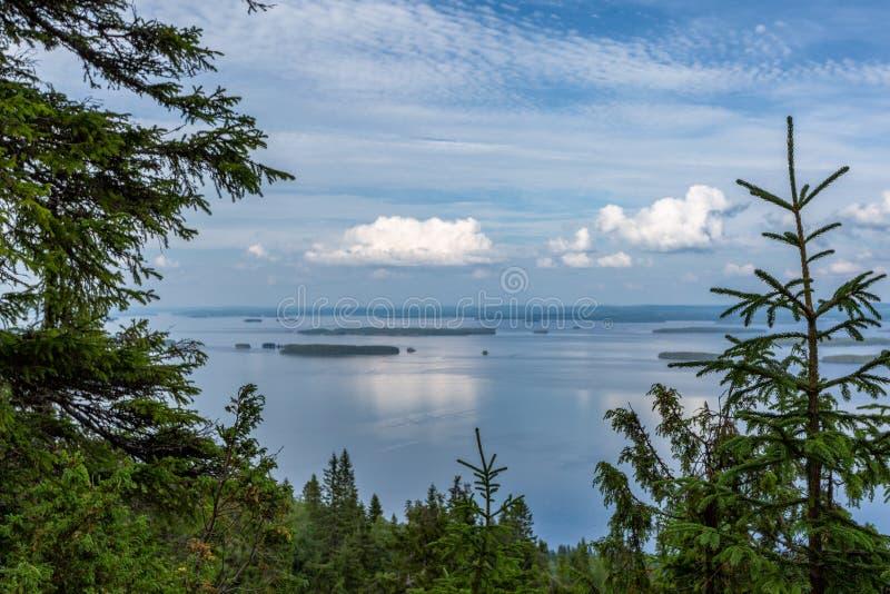 与湖和海岛的美好的风景在Koli国家公园 免版税库存图片