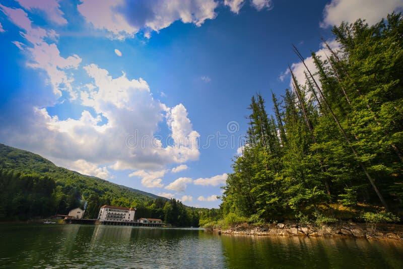 与湖森林围拢的Gozna的山风景在Valiug 库存图片