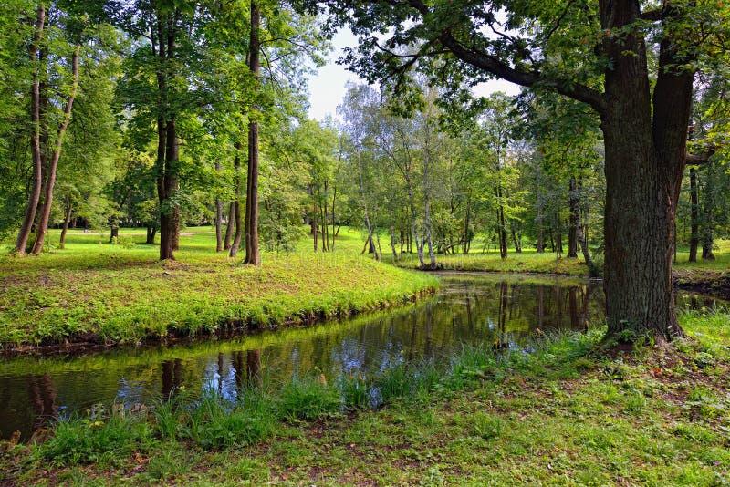 与湖的夏天风景在Gatchina庭院里, 免版税库存图片