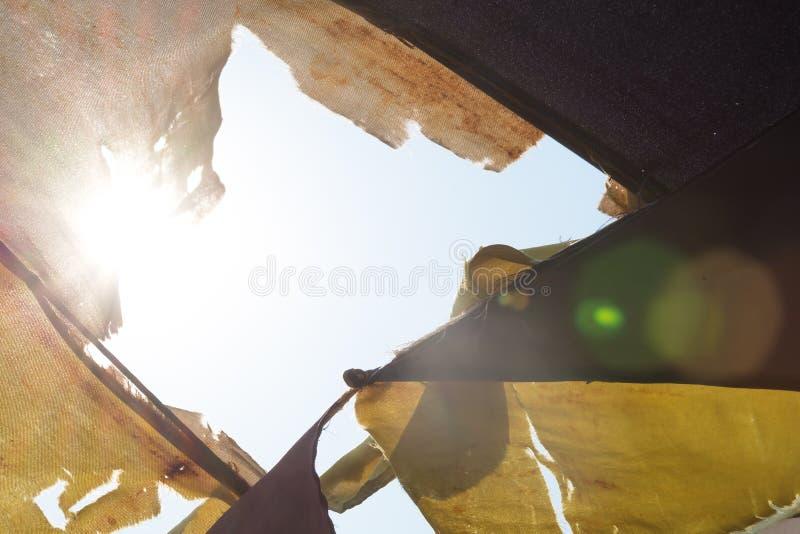 与火光的阳光在伞 库存图片