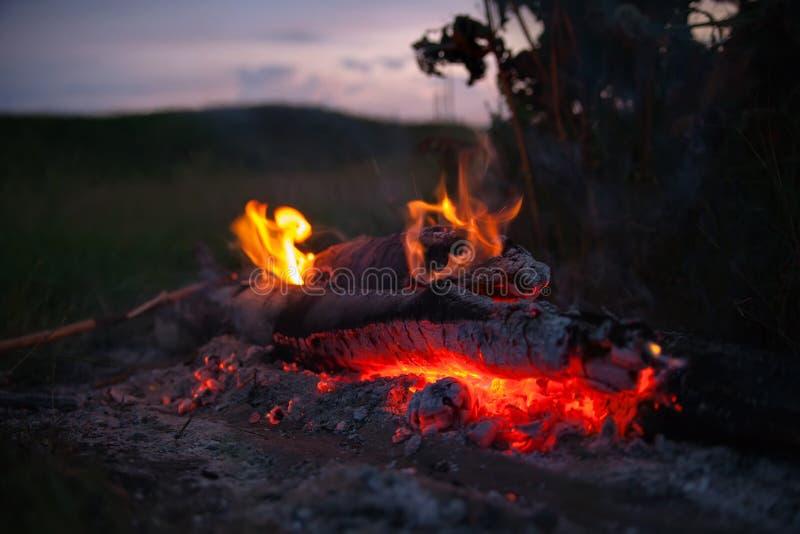 与火焰和炭烬的舌头的篝火 库存图片