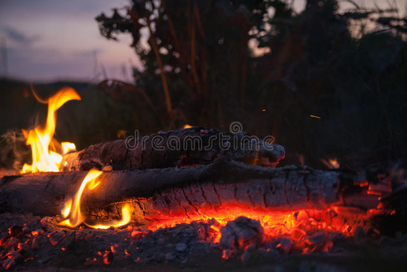 与火焰和炭烬的舌头的篝火 免版税库存照片