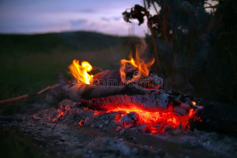 与火焰和炭烬的舌头的篝火 免版税库存图片