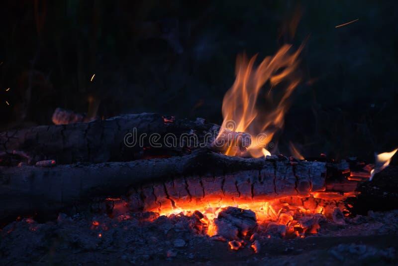 与火焰的舌头的篝火 图库摄影