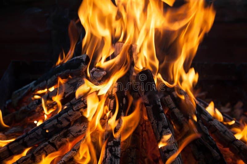 与火焰被烧焦的木头的美好的火 图库摄影