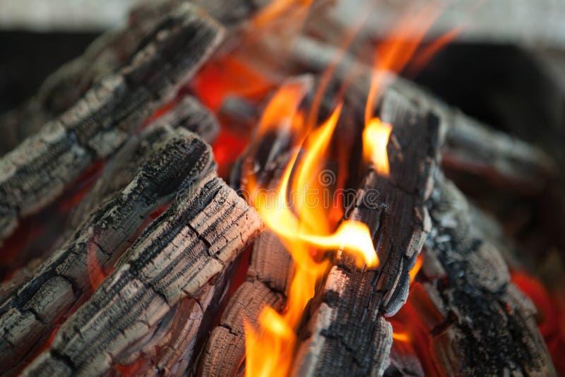 与火焰被烧焦的木头的美好的火 库存照片