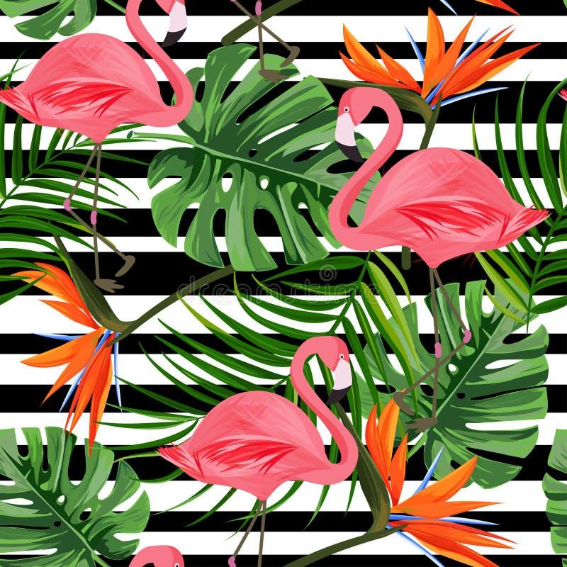 与火鸟、monstera叶子、天堂鸟花和黑条纹的热带无缝的样式 五颜六色热的夏天 库存例证
