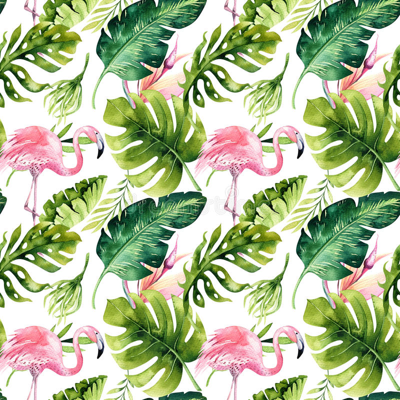 与火鸟的热带被隔绝的无缝的样式 水彩热带图画、玫瑰色鸟和绿叶棕榈树,回归线 向量例证