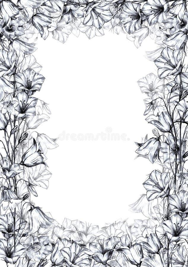 与灰色图表会开蓝色钟形花的草花和透亮层数花的手拉的花卉垂直的长方形框架在白色 库存例证