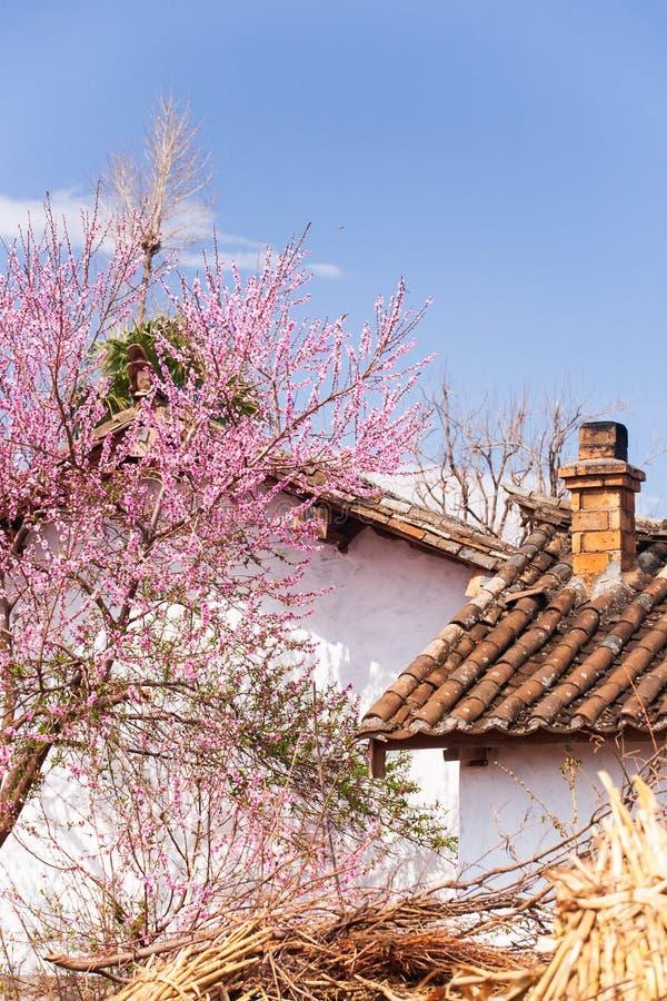 与烟囱和开花的美丽的老迷人的中国村庄 免版税库存图片