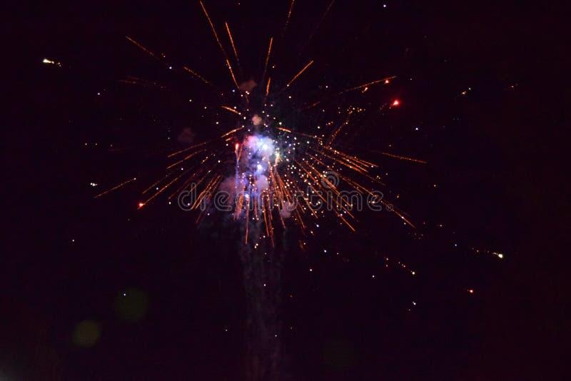 与烟花的庆祝在晚上 免版税图库摄影