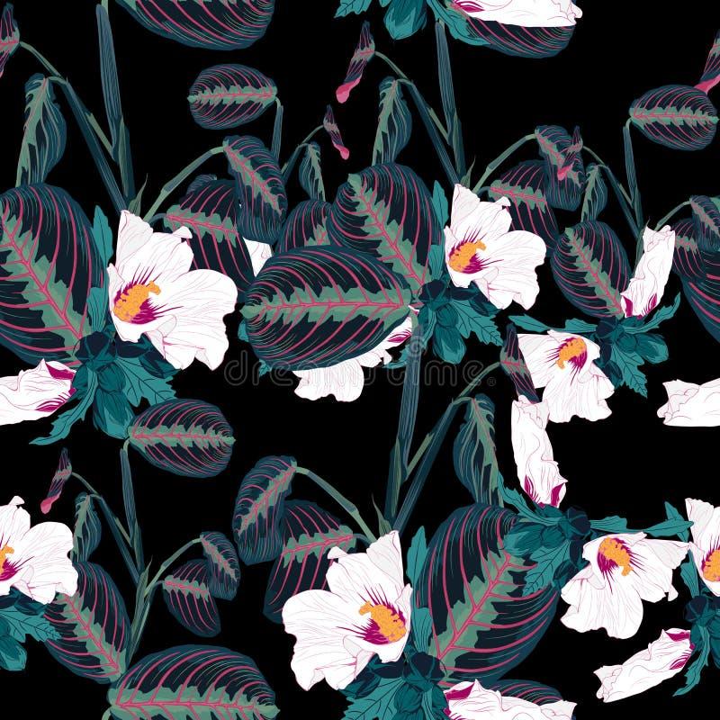 与热带叶子和异乎寻常的白色木槿的无缝的样式开花 在黑背景的黑暗的棕榈叶 向量例证