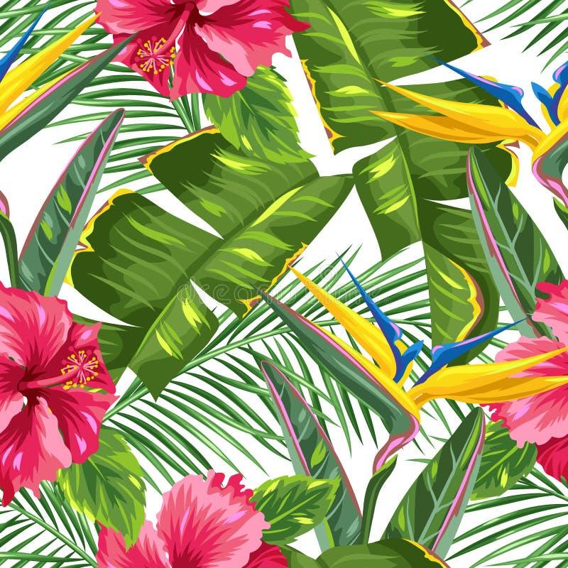 与热带叶子和花的无缝的样式 棕榈分支,天堂鸟花,木槿 向量例证