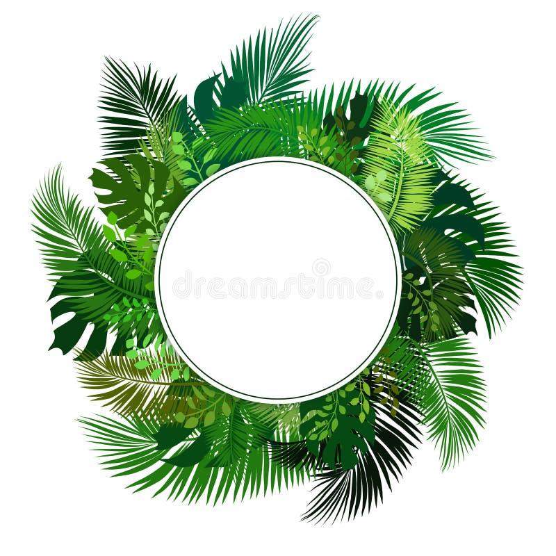 与热带叶子的圈子空白的标志 边界月桂树离开橡木丝带模板向量 库存例证