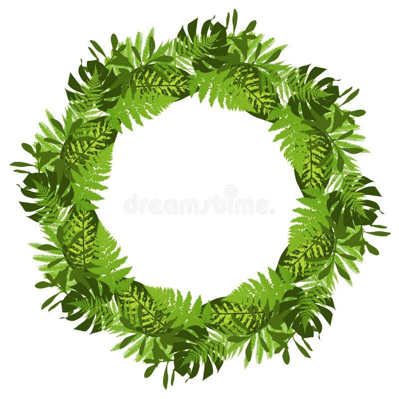 与热带叶子的绿色圈子框架 库存例证