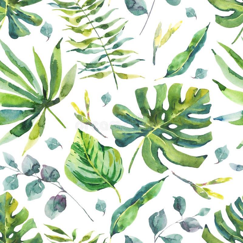 与热带叶子的水彩无缝的样式 向量例证