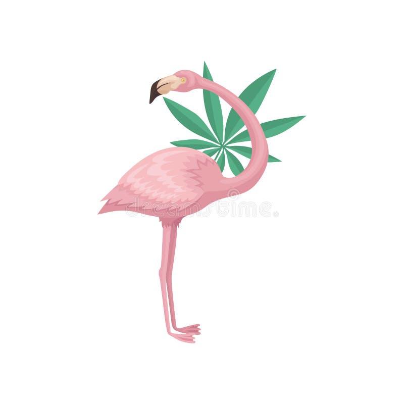 与热带树事假的可爱的火鸟  与桃红色羽毛、长的腿和脖子的美丽的异乎寻常的鸟 平的传染媒介 皇族释放例证