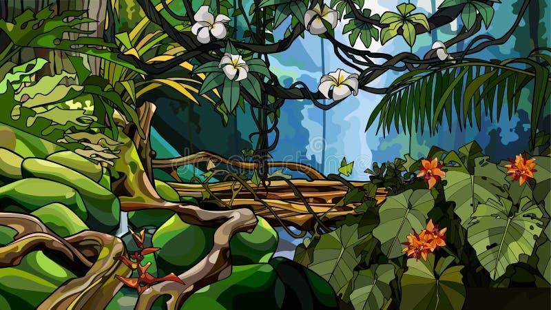 与热带树和植物丛林的密林背景  皇族释放例证