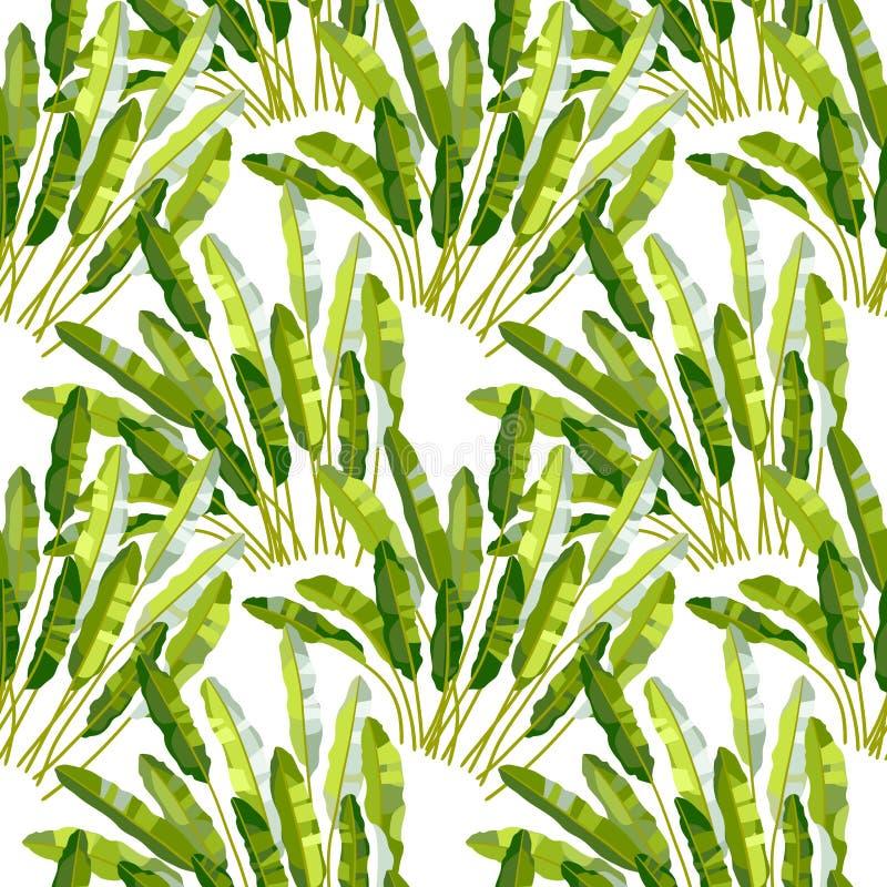 与热带植物的无缝的样式 向量例证