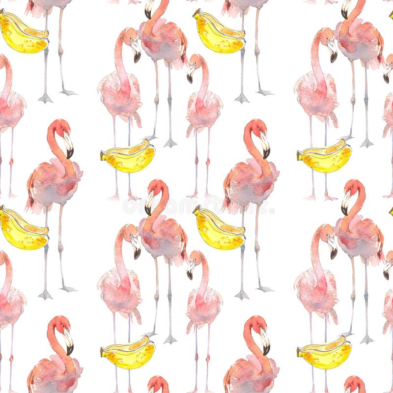 与热带火鸟和香蕉的美好的无缝的夏天样式背景 为墙纸,网页完善 向量例证