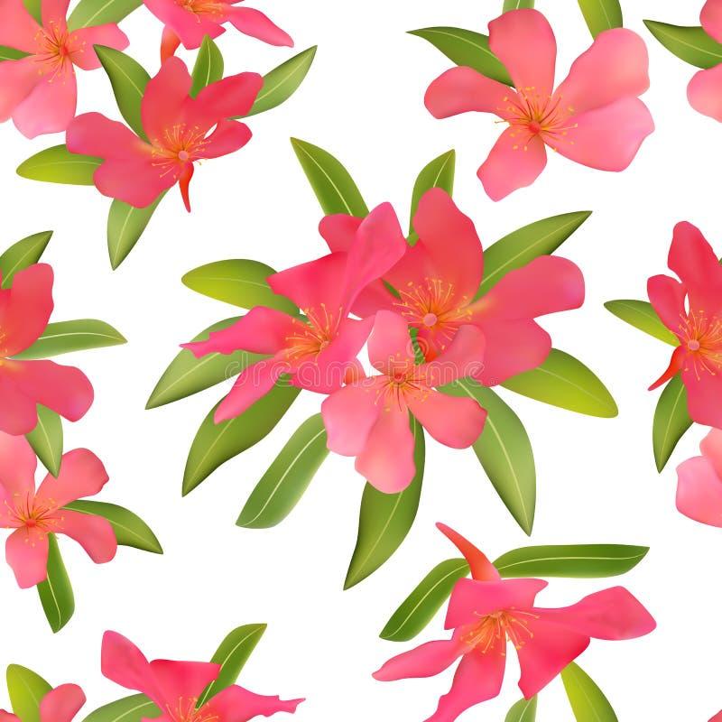 与热带红色的无缝的样式开花美好的开花pla 向量例证