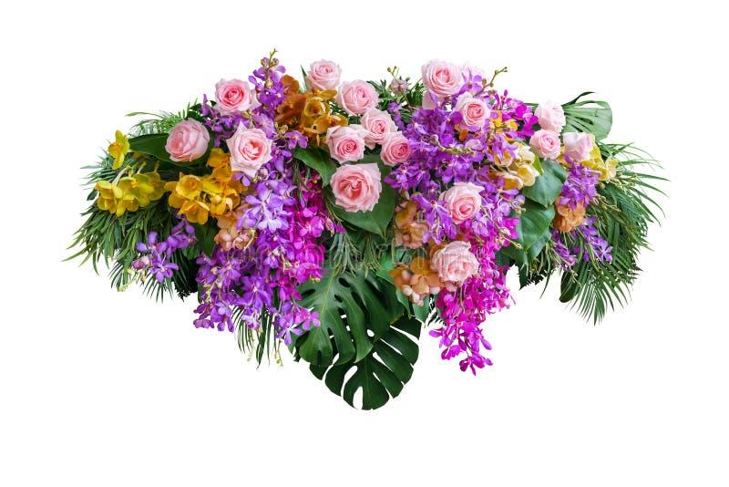 与热带绿色叶子Monstera和棕榈叶状体灌木的桃红色玫瑰和兰花花,植物布置自然背景隔绝了 库存图片