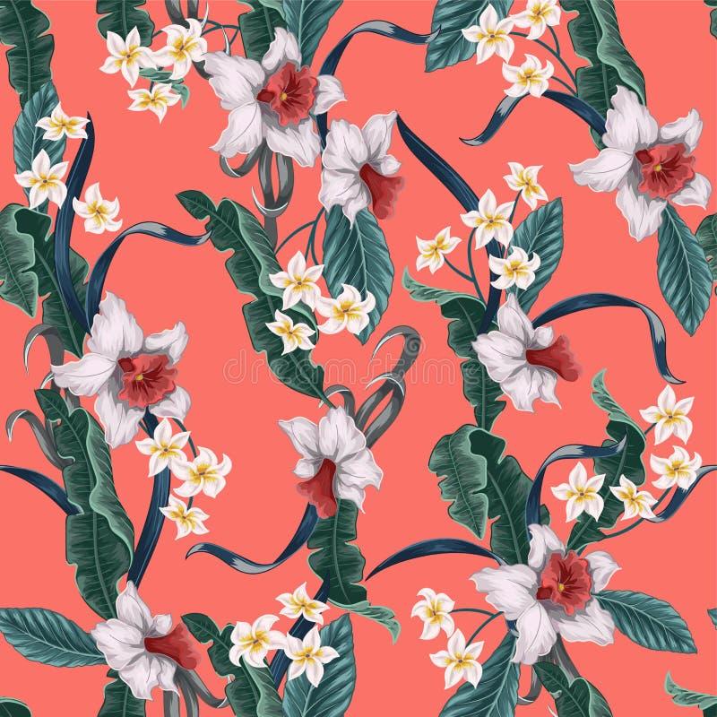 与热带花和叶子的无缝的样式例如香蕉、棕榈、叶子和水仙,在居住的珊瑚背景的羽毛 皇族释放例证