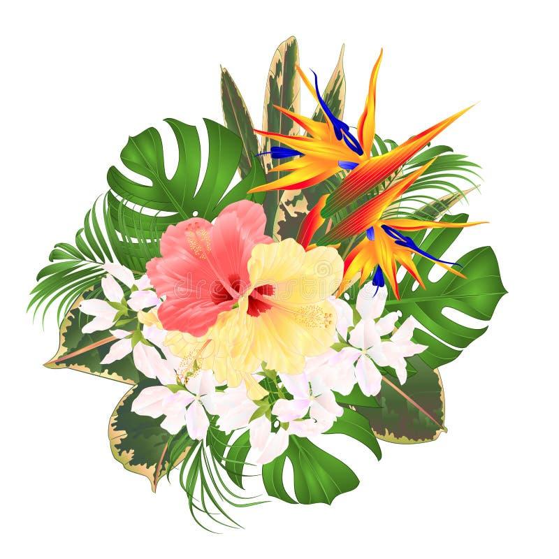 与热带花植物布置的花束与美好的鹤望兰和桃红色和黄色木槿棕榈、爱树木的人和ficu 向量例证