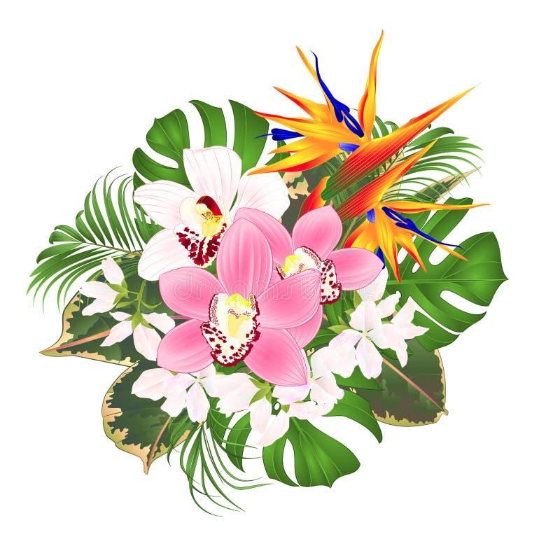 与热带花植物布置的花束与美好的鹤望兰和白色和桃红色兰花兰花棕榈,philodendr 向量例证