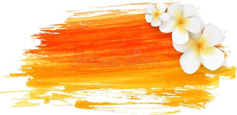 与热带花的掠过的背景 向量例证