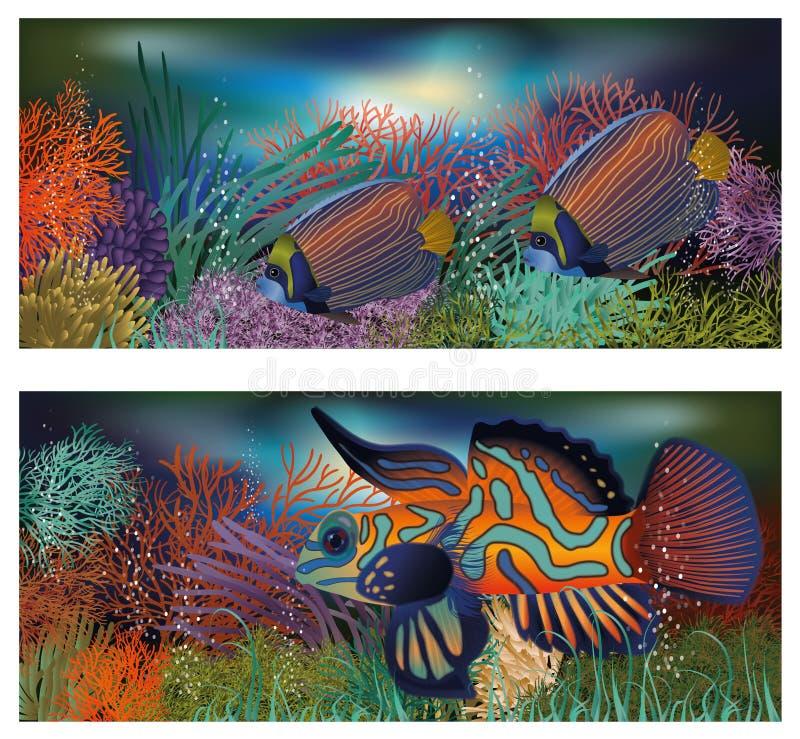 与热带鱼的水下的横幅 向量例证