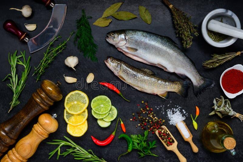 与烹调成份的鳟鱼鱼在黑暗的背景 库存照片