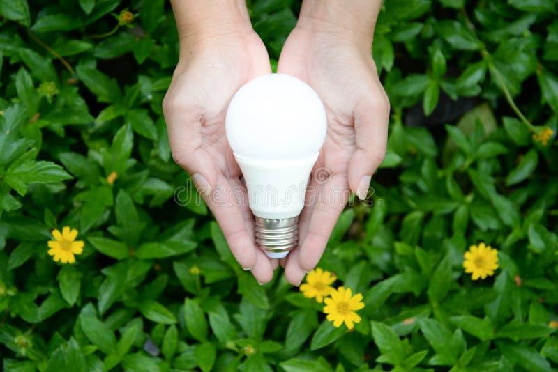 与照明设备的LED电灯泡 免版税图库摄影