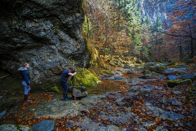 与照相机的专业自然摄影师射击 免版税图库摄影