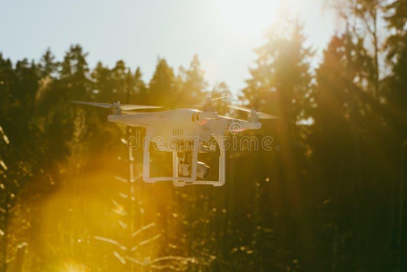 与照相机的飞行寄生虫 免版税库存照片