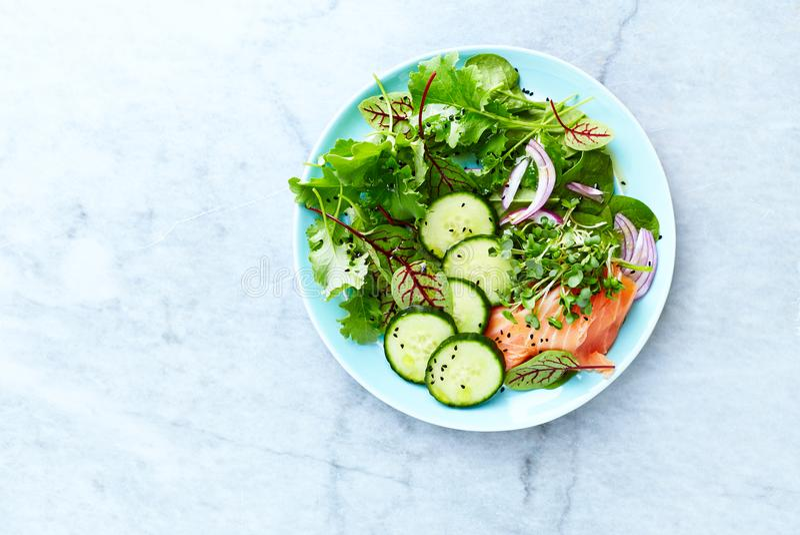 与熏制鲑鱼、菠菜、黄瓜、红洋葱、草本和黑kumin的混杂的叶子沙拉 免版税库存图片