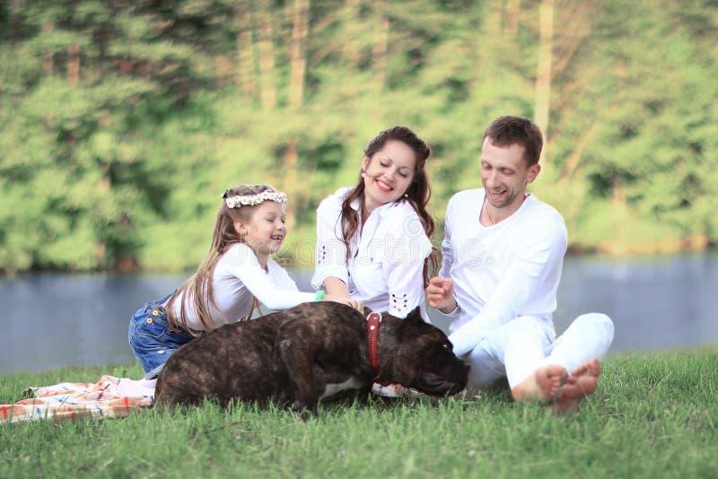与爱犬的愉快的家庭在野餐在一个晴朗的夏日 pregn