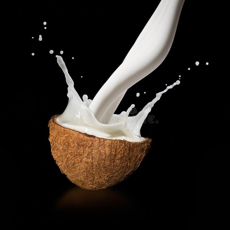与牛奶飞溅的椰子 库存照片