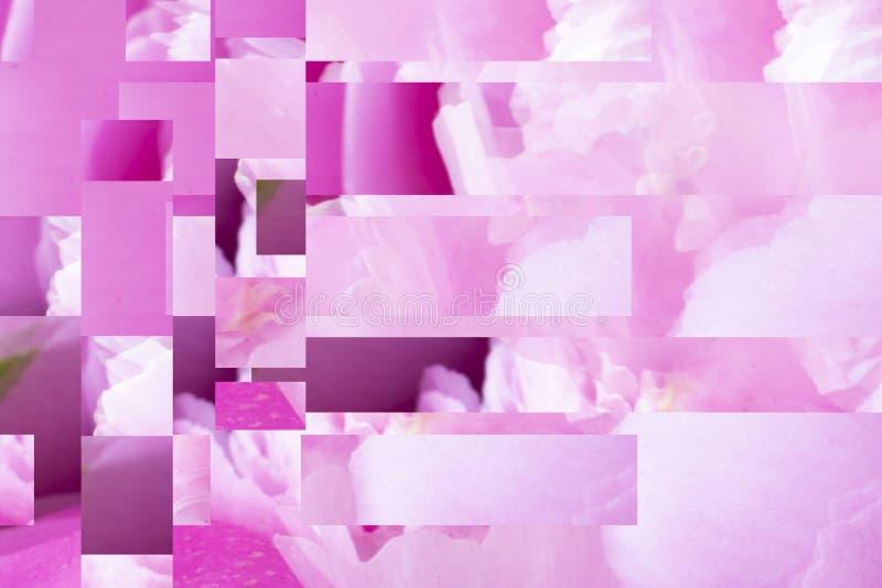 与牡丹叶子和立方体的部分的抽象duotone梯度对比背景创造性的设计的 E ?? 免版税库存照片