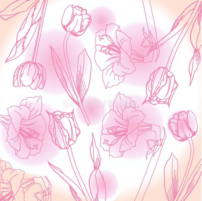 与牡丹的桃红色和白色背景 向量例证