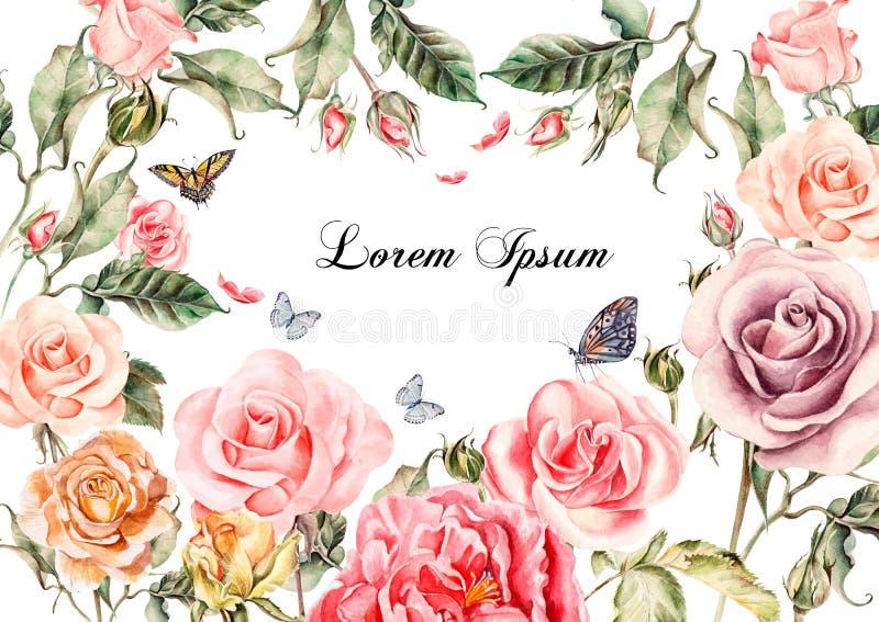 与牡丹的美丽的水彩卡片开花,玫瑰 蝴蝶和植物 向量例证