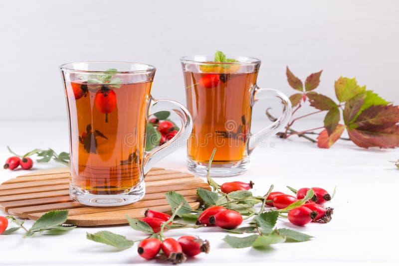 与犬蔷薇的健康秋天茶,分支用莓果 免版税库存照片