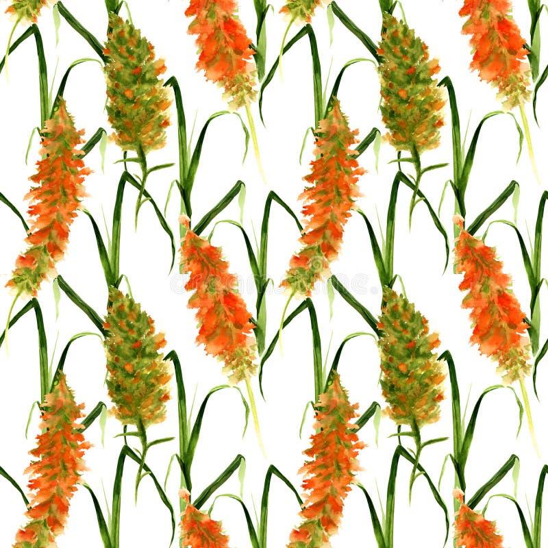 与狂放的水彩黄色和绿色花、草本和草的手拉的无缝的样式在白色背景 库存例证
