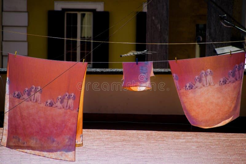 与狗图画的板料干燥在大阳台 库存照片
