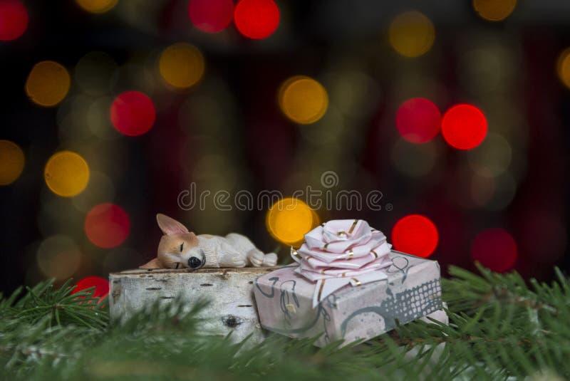 与狗在云杉的分支睡觉反对黄色和红色bokeh光背景的弓的礼物 免版税库存照片
