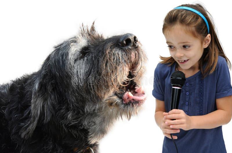 与狗的采访 免版税库存图片