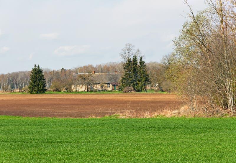 与独立式住宅的国家风景 库存照片