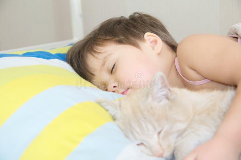 与猫、喜爱的宠物说谎在儿童胸口的,互作用孩子之间和猫的小女孩睡眠 免版税图库摄影