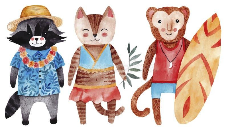 与猫、浣熊和猴子的逗人喜爱的水彩例证在夏天样式 皇族释放例证